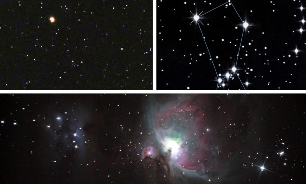Photos of Betelgeuse (top right) and the Orion nebula.