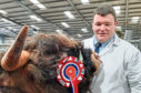 Stuart Campbell with the bull champion K2 of Cladich.