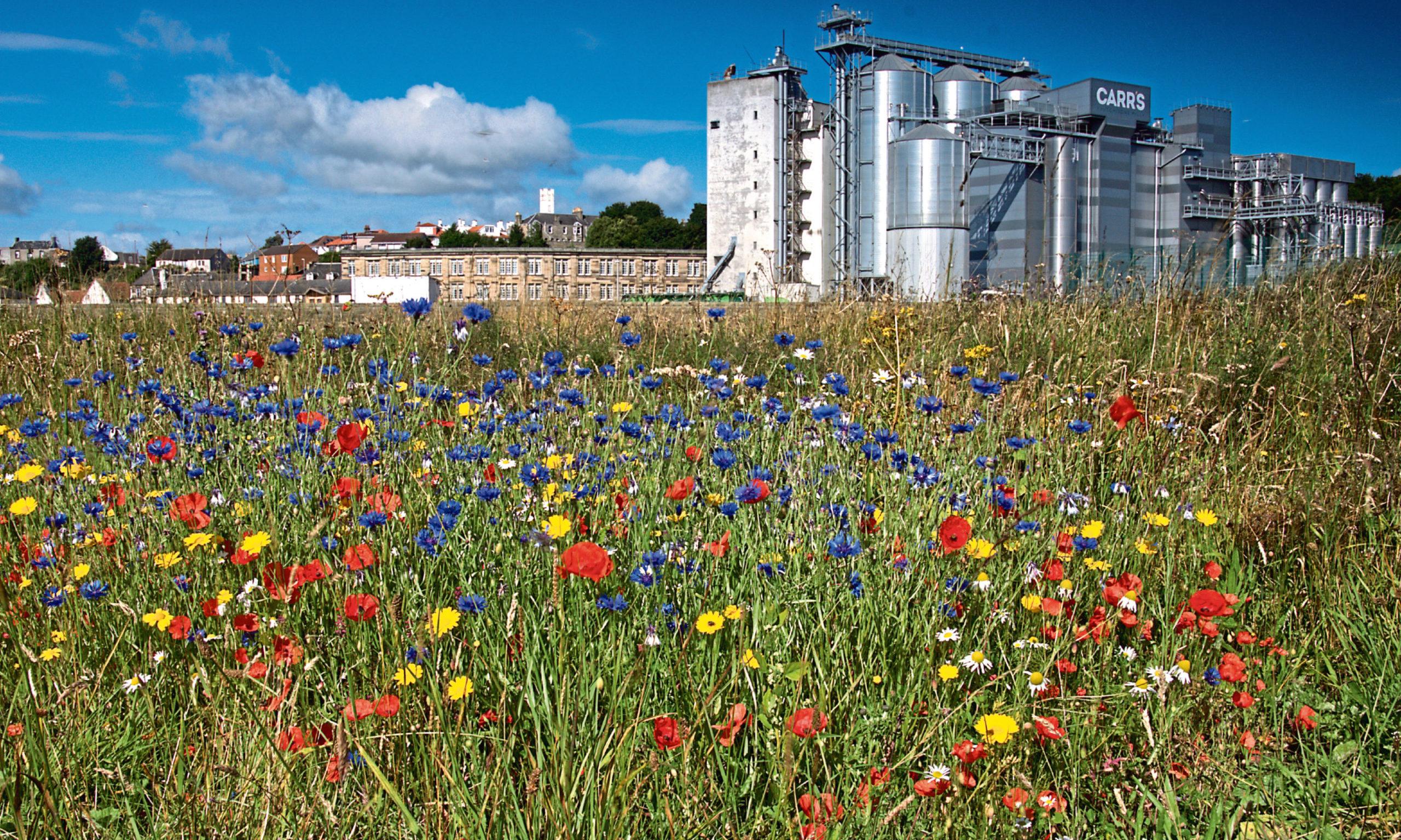 Carr's Flour Mill, Kirkcaldy