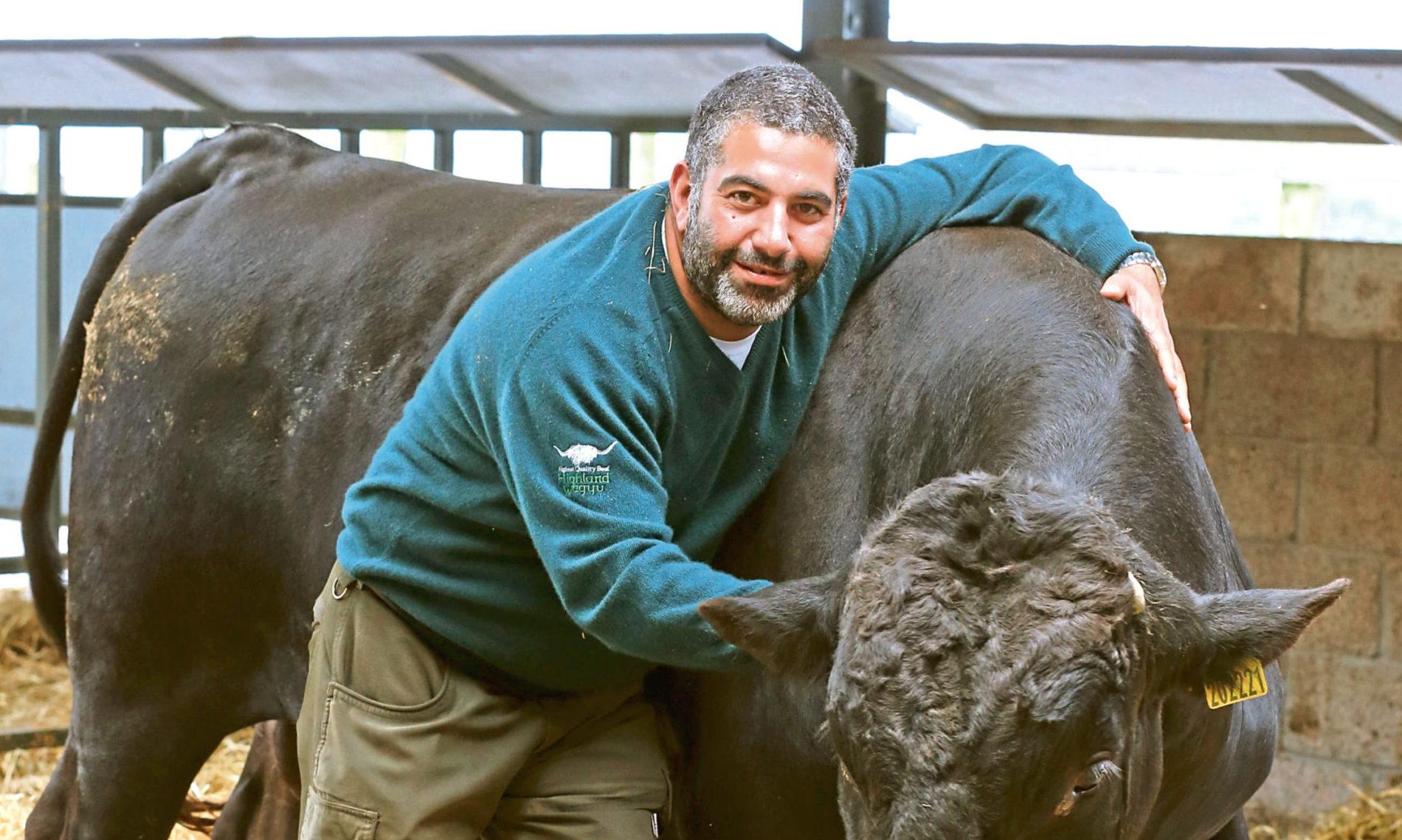 Mohsin Al-Tajir with Thor the bull, in Blackford, Scotland.