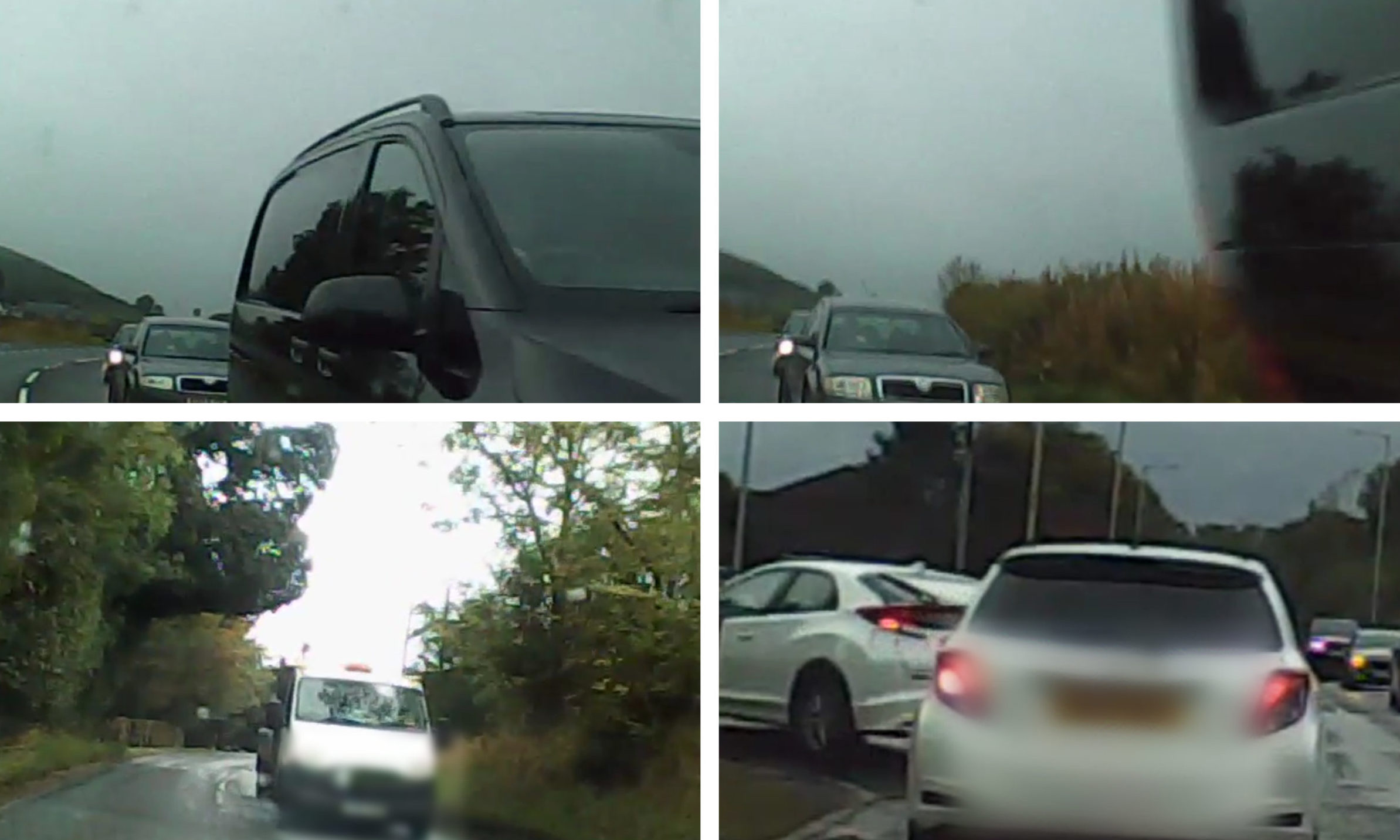 Bowman captured the entire journey on dashcam.
