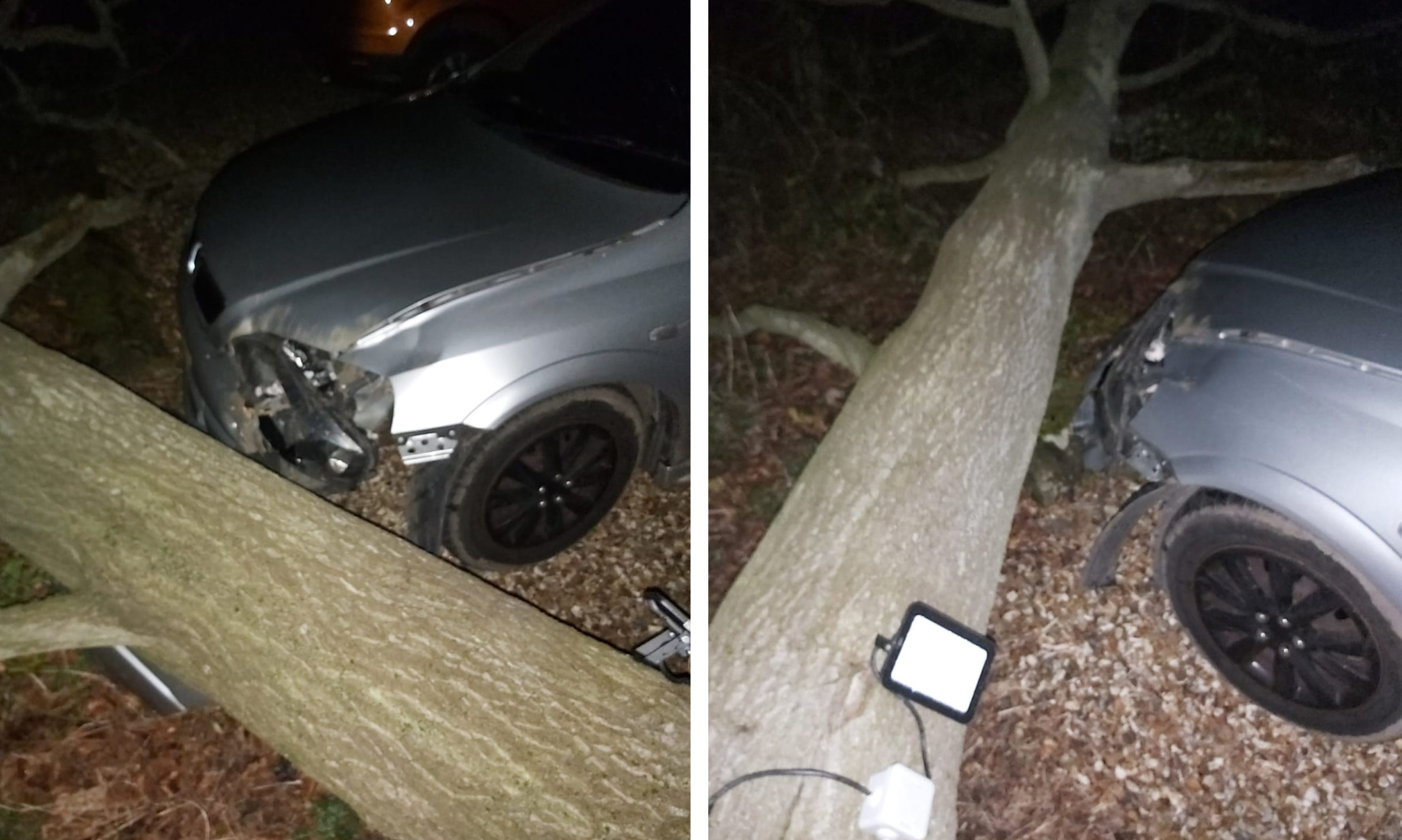 The tree crashed down on to their car during Storm Dennis.