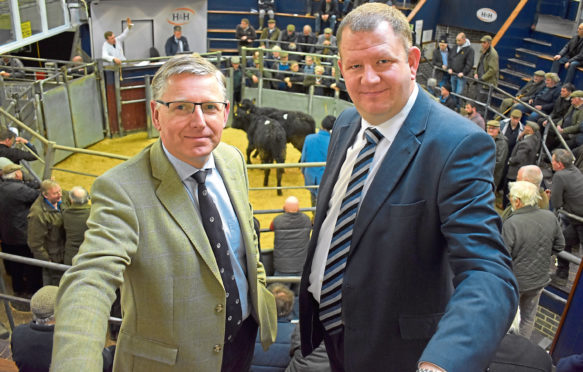 IAAS president Scott Donaldson, left, and executive director Neil Wilson.