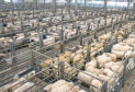 Scotland's marts are operating under strict new safety rules while they are still open.