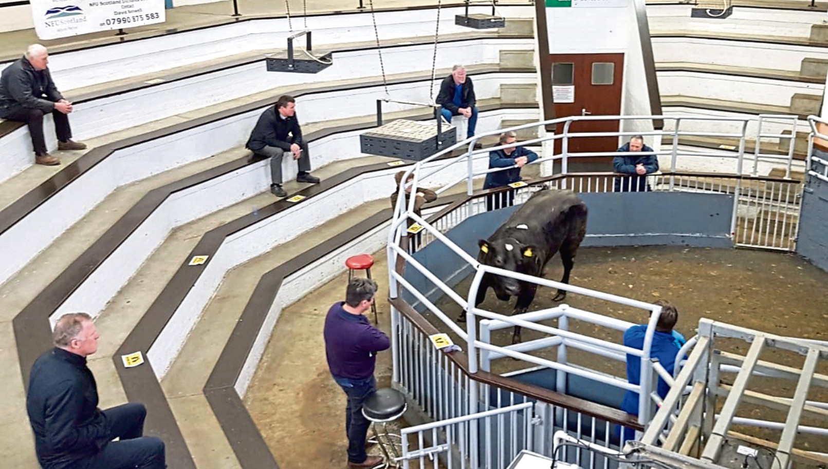Livestock marts introduced strict new guidelines on social distancing.