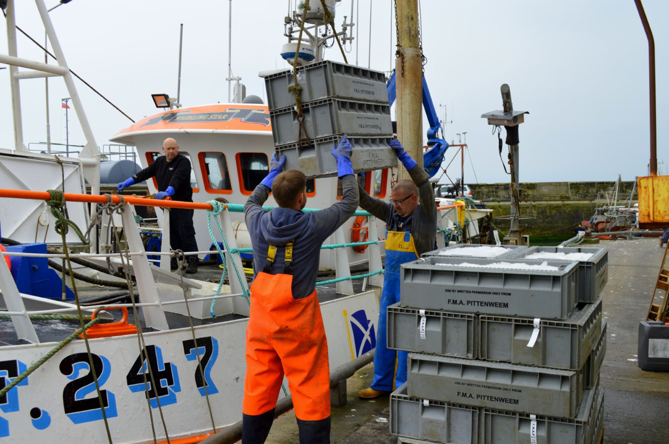 A fishing boat unloads its catch of prawns destined for Spain.