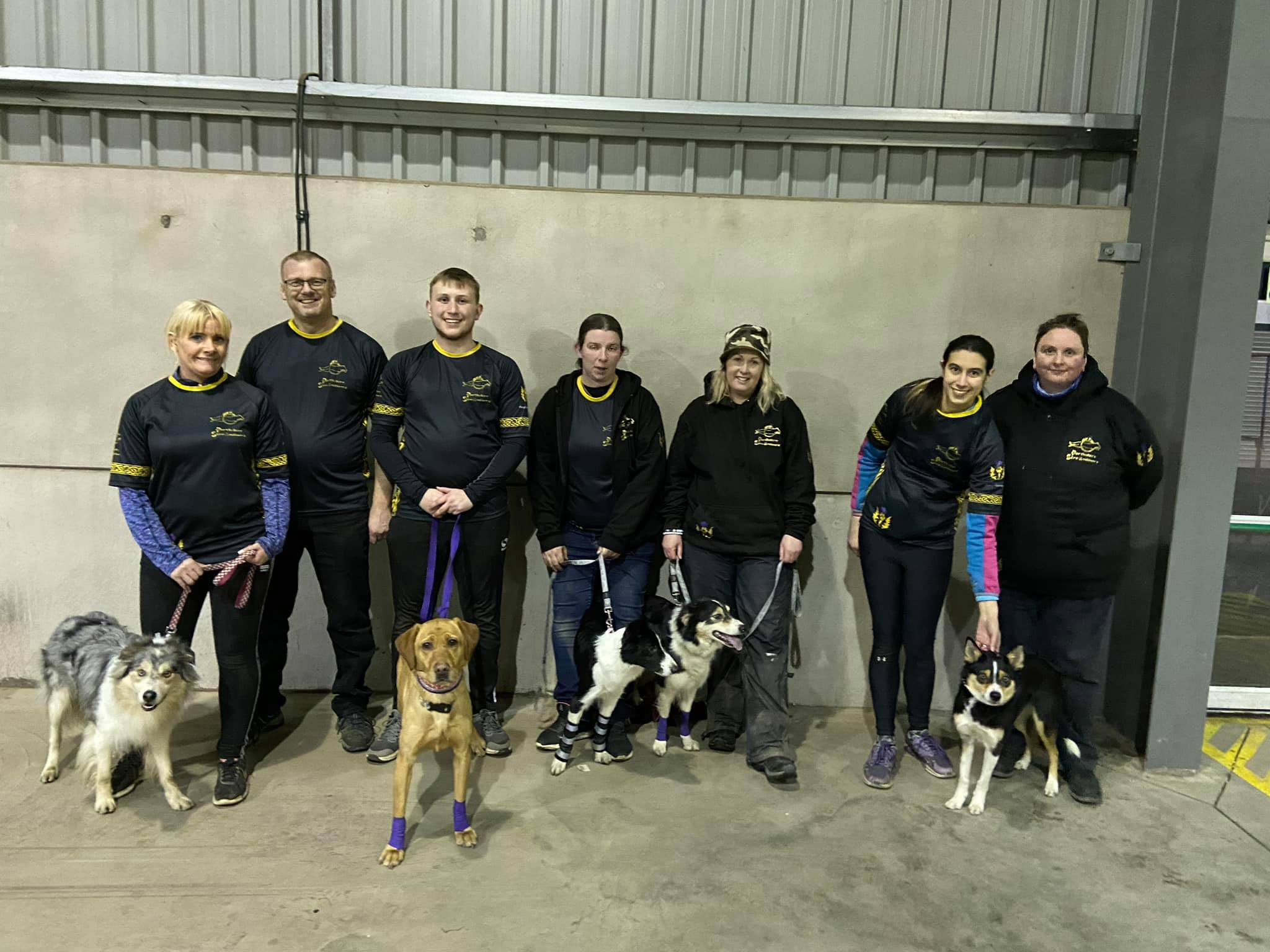 The Perthshire Streamlinerz Crufts flyball team 2020.