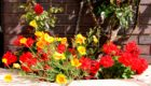 Geraniums with Californian Poppies