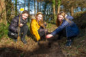 Donibristle PS pupils Abbie Duff (12), Holly Burns (11) and Erin Sinclair (11), planting new oak trees in ancient woodland in Dalgety Bay