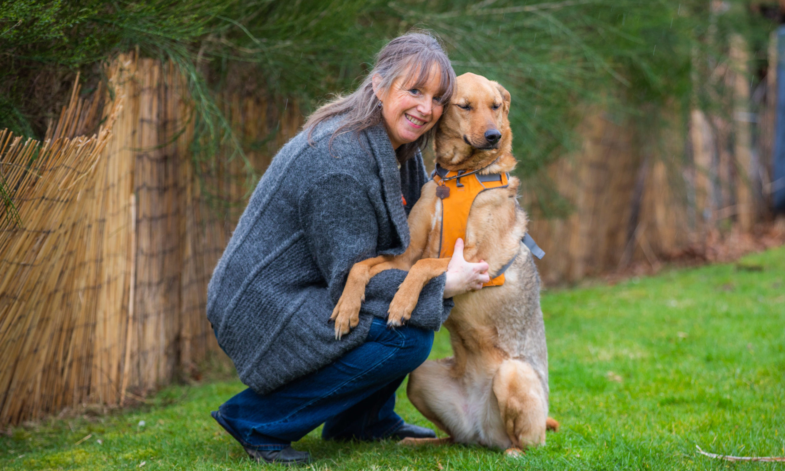 Lucy Proctor pictured with lurcher Inca, hopes to see the first dog poo-fuelled streetlamp installed soon.