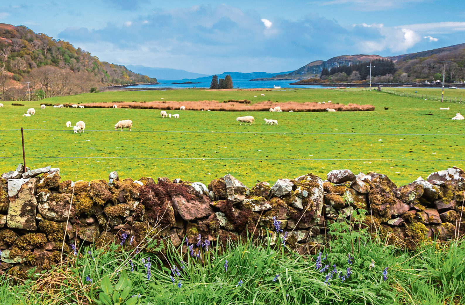 Stunning scenery has helped make agritourism successful in Scotland.
