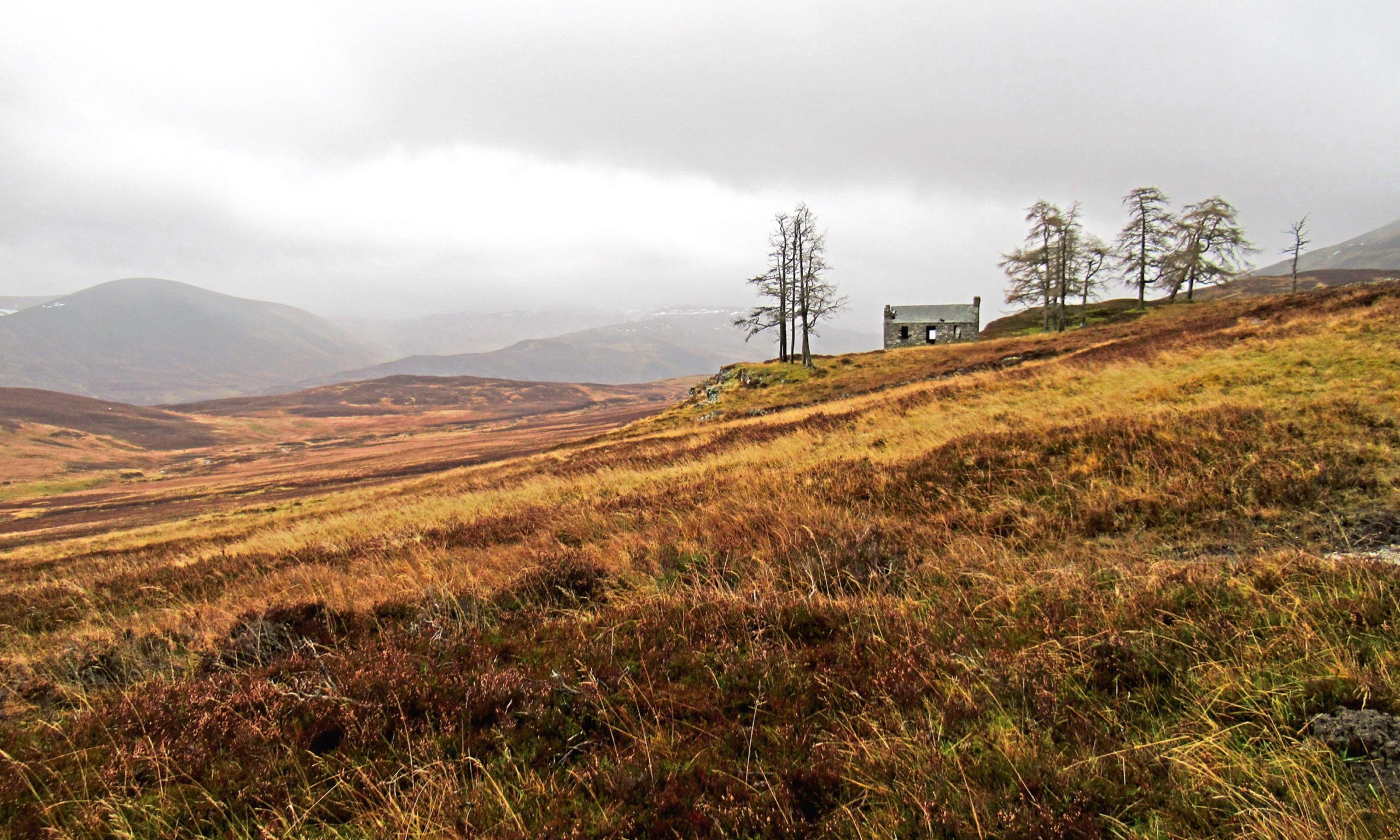 Creag-choinnich Lodge looking out over Glen Fender.