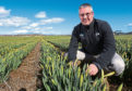 Daffodil bulb exports account for 40% of Grampian Growers  turnover.