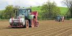 Growers hard at work planting potatoes