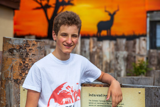 Callum Alexander set up the Protection for Animals charity a year ago.
