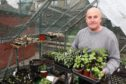 Forfar Horticultural Society chairman Dave Nelson in his greenhouse.