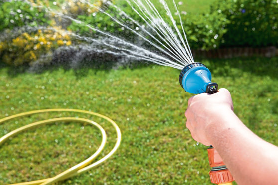Garden hose, watering the garden