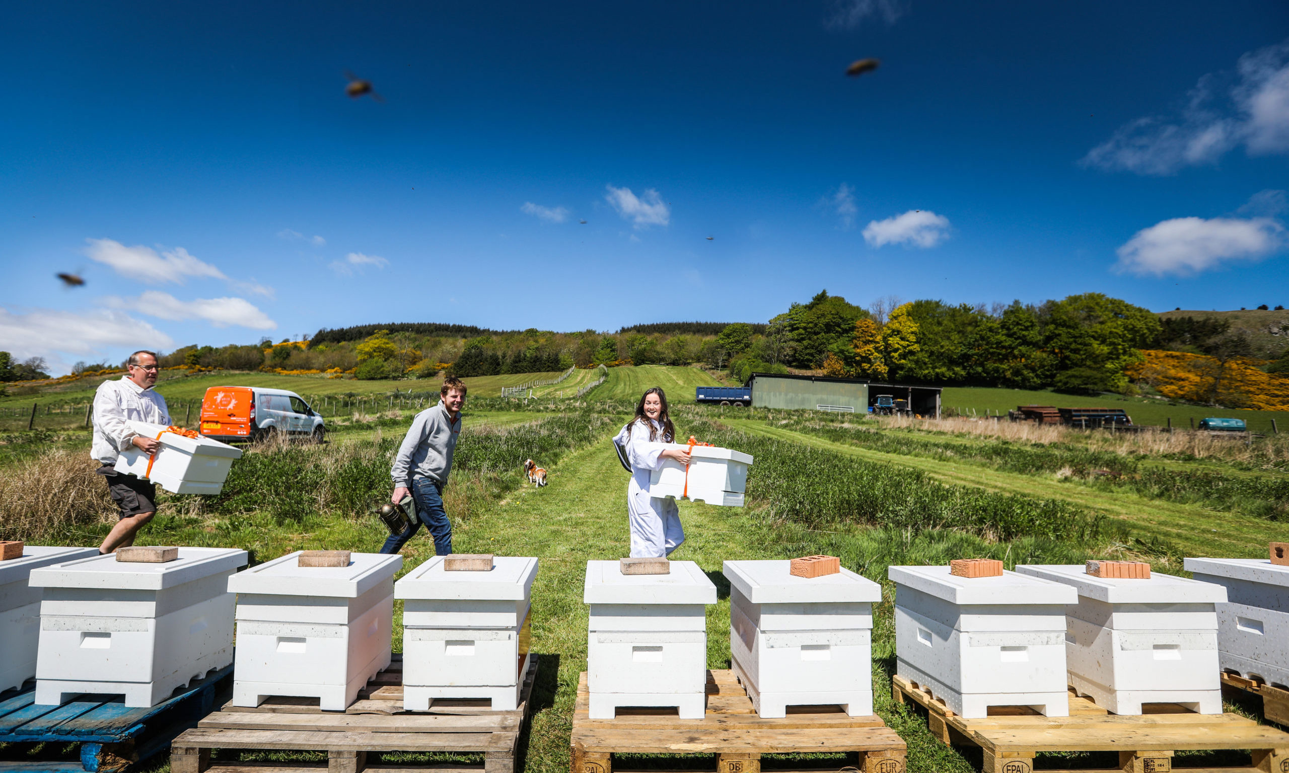 Beekeeper Meik Molitor, Managing Director Daniel Webster and Production Manager Emily-Kate McDonnell