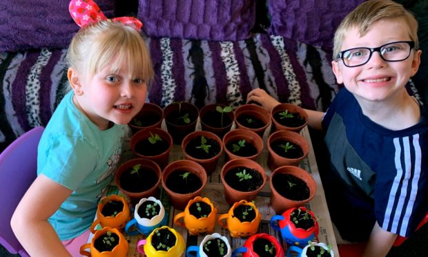 Emily and Keiran pot up their flower seedlings