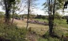 Morris Leslie Ltd has lodged plans for the holiday park at Ruthven.