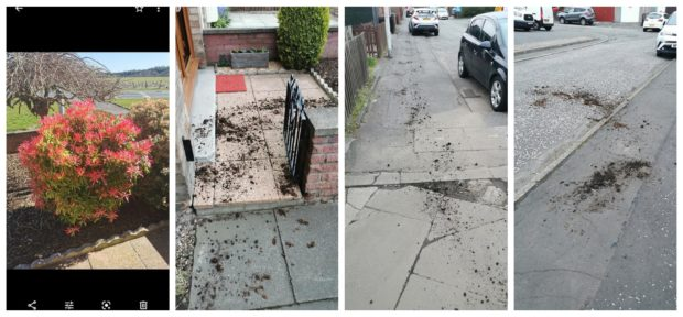 A trail of earth led up the street before abruptly stopping.