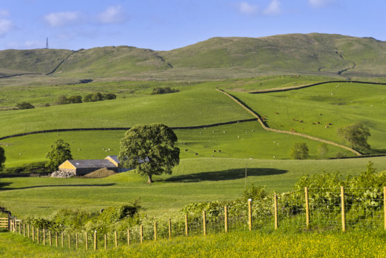 Farm improvements including fencing and new buildings could qualify for compensation when a tenancy comes to an end.