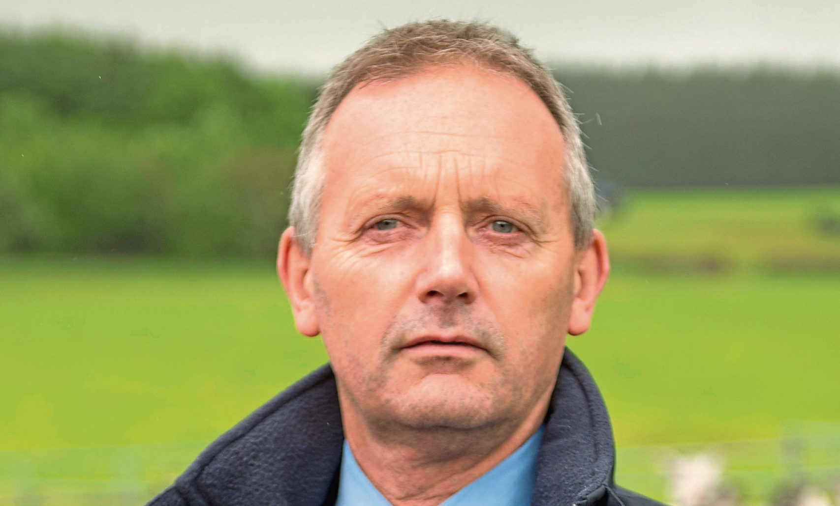 Phil Stocker, chief executive, National Sheep Association