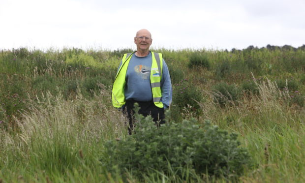 Ian Ford, chairman of the Friends Of Riverside Nature Park, among the park meadows.
