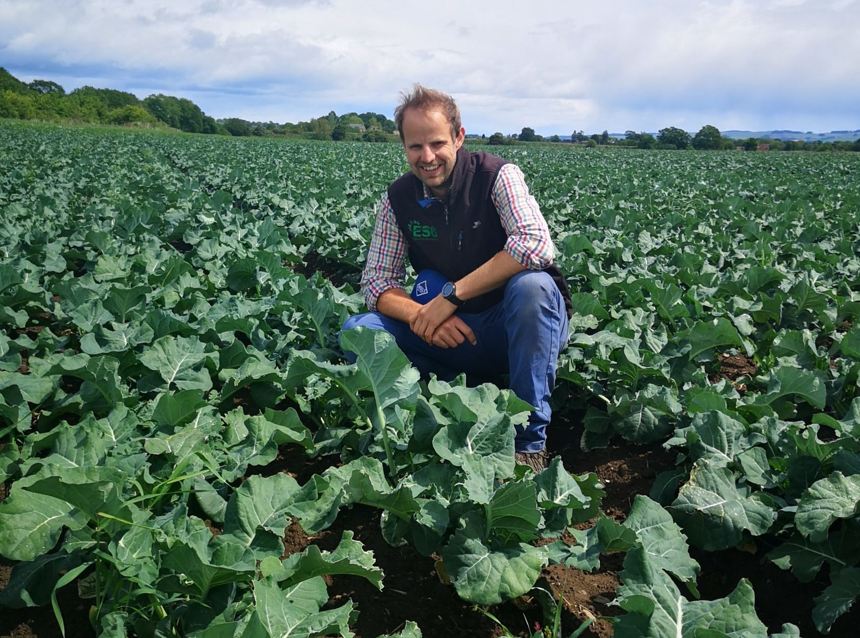 ESG agronomist James Rome hopes trial tests on fields of brassicas will help maximise local growers' crops.