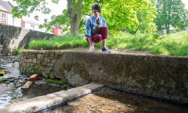 Andrea McLelllan at the Lady Burn in Cupar. She believes the death of her dog Benji is linked to algae from the burn.