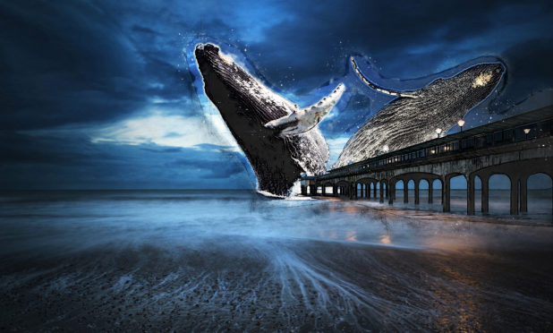 The Levenmouth whale sculpture is just one of the potential projects that will attract more tourists to Levenmouth.