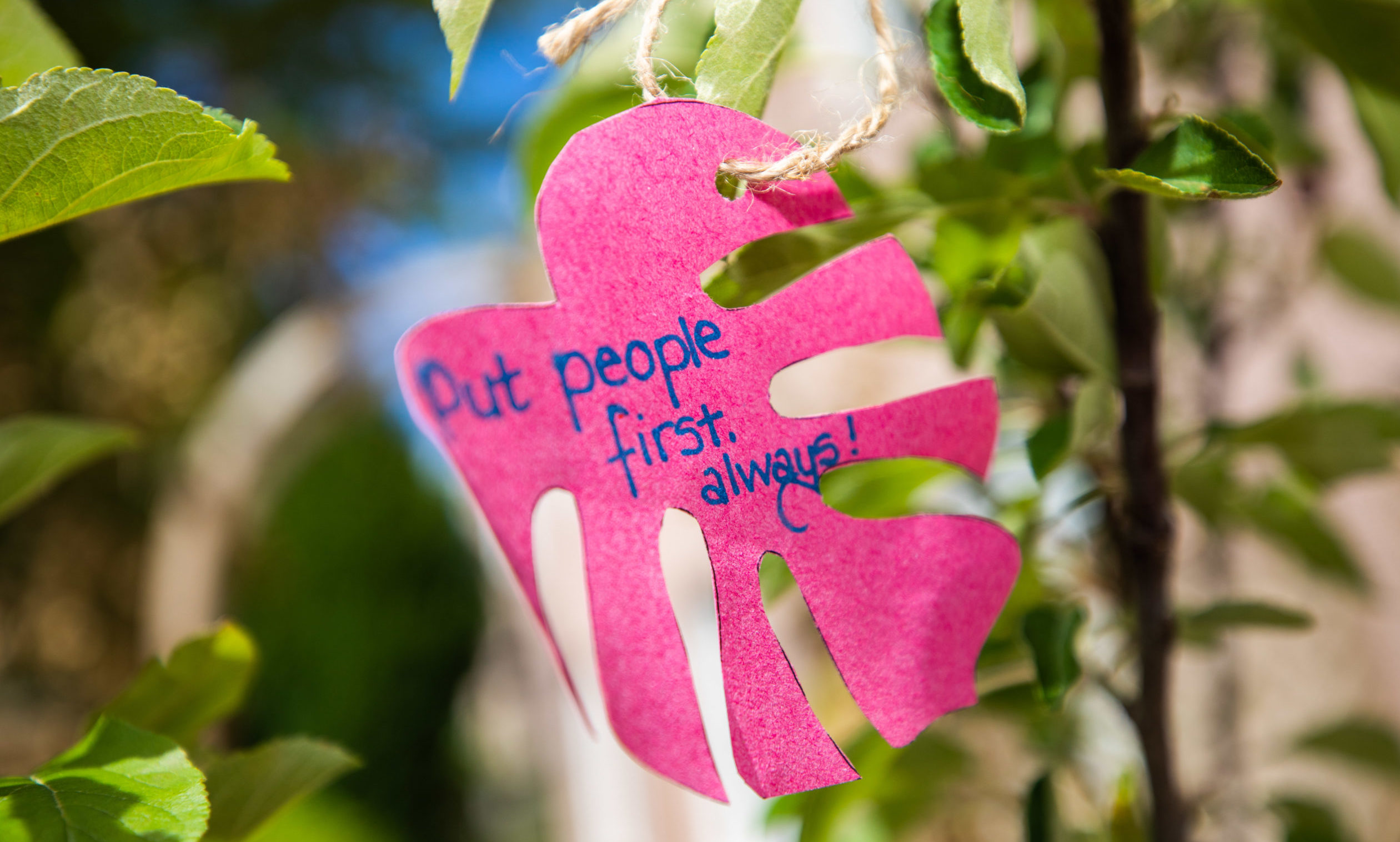 PKAVS has launched a 'wishing tree' at its city centre office.