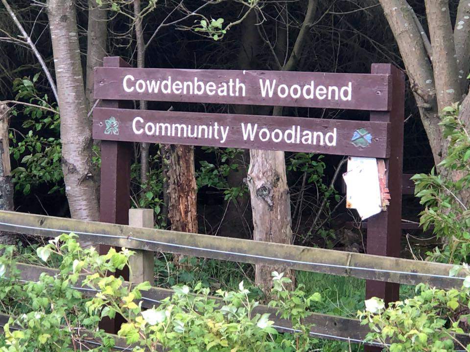 The popular wooded area where the alleged incident took place.