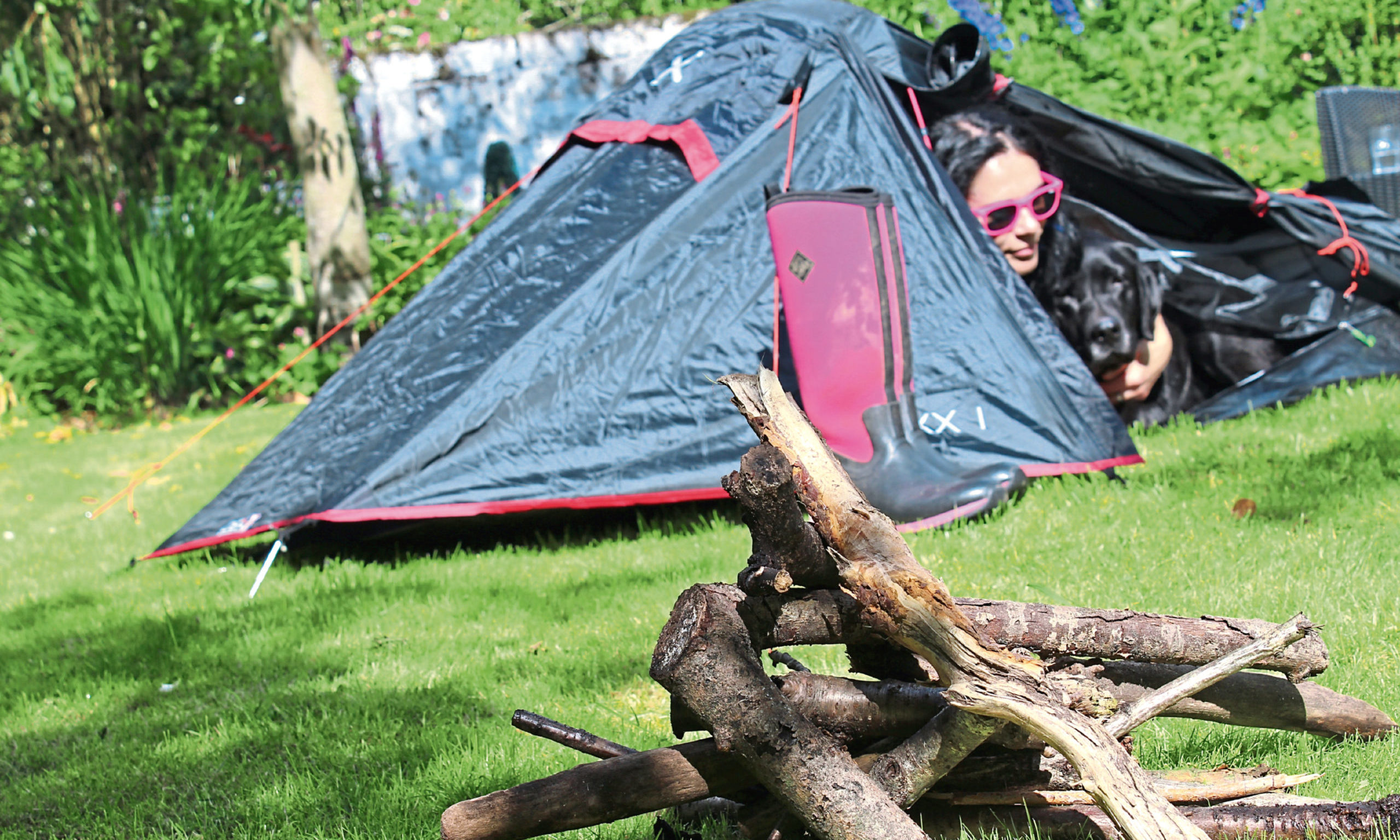 """The Courier's Gayle Ritchie and her dog Toby set up a tent in the garden as part of  a Scouts Scotland """"at home"""" challenge during lockdown"""
