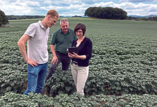 Kenneth Waring, Jim Wilson and Seonaid Ross, of SoilEssentials, conduct a field test on potatoes.