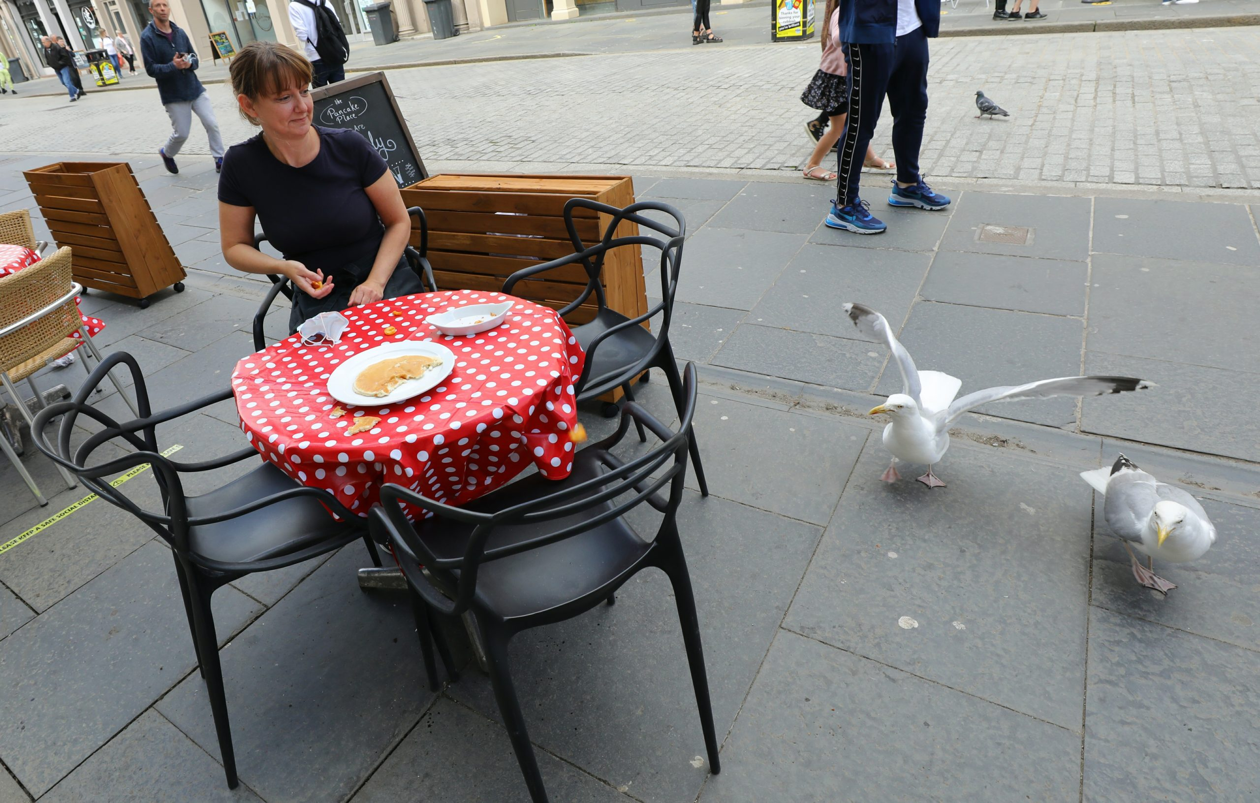 Pancake Place manager Sam Wilson plagued by gulls.