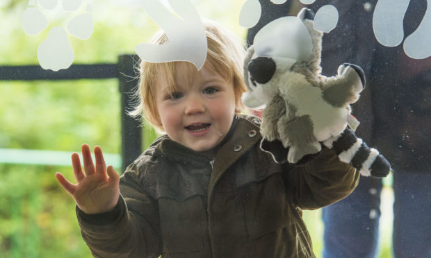 EDINBURGH SCOTLAND - JUNE 29: A child looks delighted as Edinburgh Zoo reopens with new social distancing measures in place during the ongoing coronavirus pandemic, on June 29, 2020, in Edinburgh, Scotland.