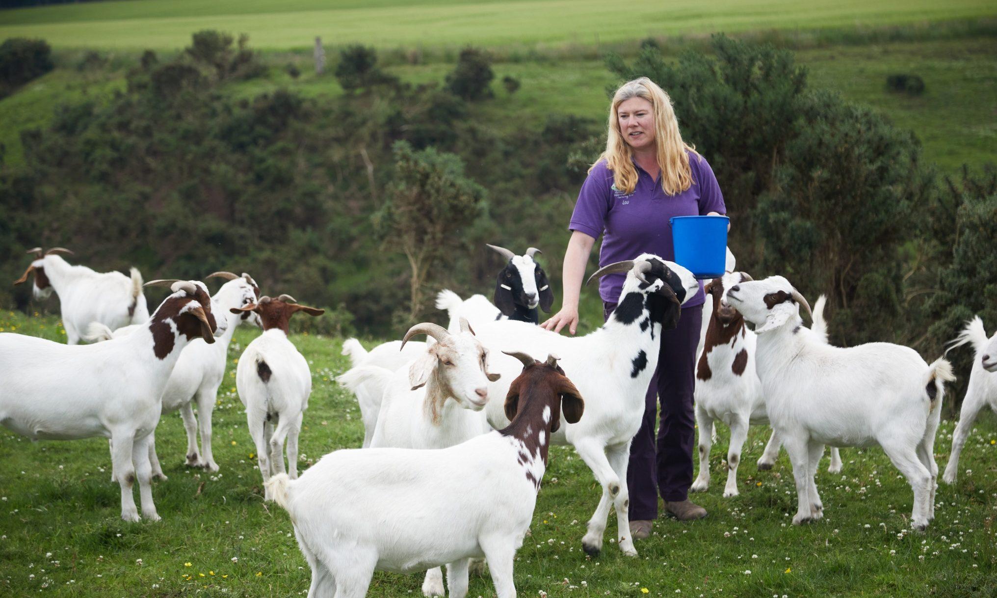 Louise Nicoll of Newton Farm Holidays, near Forfar.