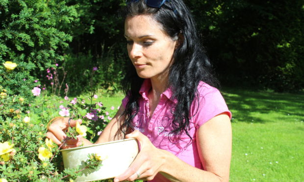 Gayle collects flowers from the garden.