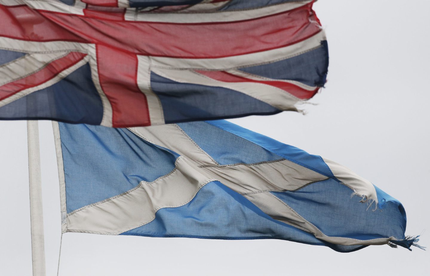 flags of Scotland and the union