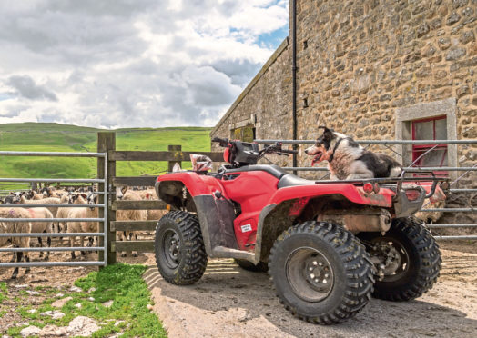 Quad bikes are a favourite target for criminal gangs operating in rural areas.
