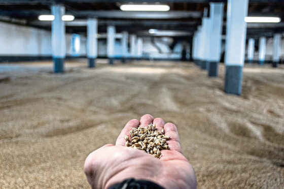 The Scotch Whisky Association says around 90% of barley requirements of the industry are sourced in Scotland.