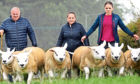 The price paid for the Boden family's best lamb set social media alight.