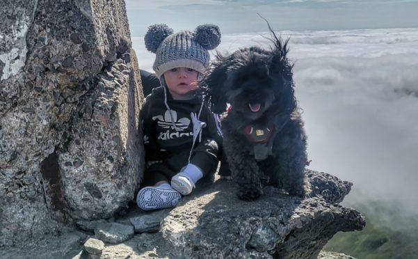 Innis at the summit of  Ben Lawers with pet dog Millie.