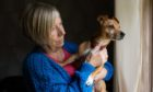 Lesley Whittet, with her other dog Peppa, has been has been left distraught by the weekend incident.