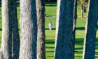 Bryson DeChambeau, of the United States, walks up the 16th fairway during the final round of the US Open Golf Championship, Sunday, Sept. 20, 2020, in Mamaroneck, N.Y. (AP Photo/Charles Krupa)