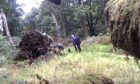 CCTV of alleged interreference of predator traps in Perthshire