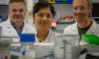 The In4Dern team: Dr Andrew Woodland, Dr Rangeetha Jayaprakash, and Dr Mark Bell.