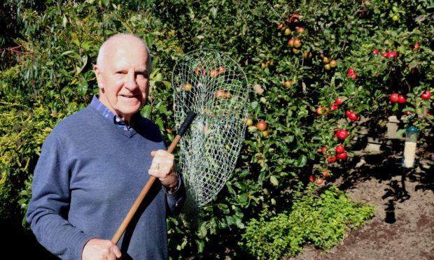 John Stoa picking apples and pears