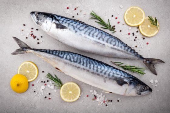 Fresh fish. Mackerel with salt, lemon and spices on gray background. Cooking fish with herbs. Top view; Shutterstock ID 588165902; Purchase Order: -
